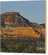 Red And Green Plateau New Mexico Wood Print