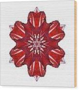 Red And White Amaryllis Vii Flower Mandala White Wood Print