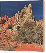 Red And White Desert Towers Wood Print