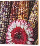 Red And White Mum With Indian Corn Wood Print