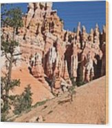 Red And White Rocks - Bryce Canyon Wood Print