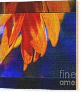 Red And Yellow Bloom In A Blue Paradise Wood Print