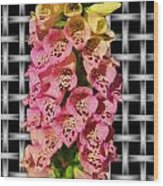 Red And Yellow Hollyhocks Wood Print