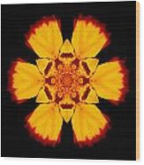 Red And Yellow Marigold II Flower Mandala Wood Print