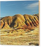 Red And Yellow Painted Hills Wood Print