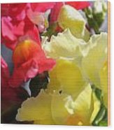Red And Yellow Snapdragons IIi Wood Print by Aya Murrells
