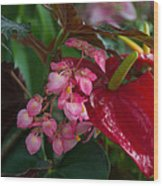 Red Anthurium Wood Print