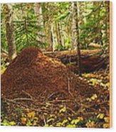 Red Ants Nest Wood Print
