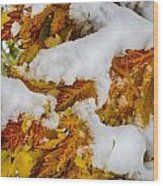 Red Autumn Maple Leaves With Fresh Fallen Snow Wood Print