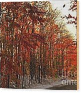 Red Autumn Road In Snow Wood Print