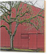 Red Barn And Green Tree In Dundee Hills Oregon Wine Country Wood Print