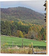 Red Barns And Mountains Wood Print