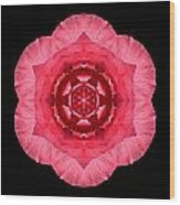 Red Begonia I Flower Mandala Wood Print