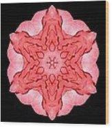 Red Begonia II Flower Mandala Wood Print