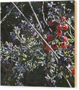 Red Berries And Violet Flowers Wood Print