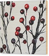 Red Berry Study Wood Print