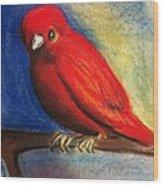 Red Bird Wood Print by Anais DelaVega