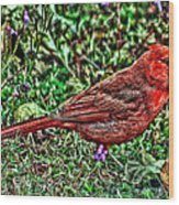 Red Bird Art Wood Print