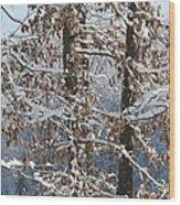 Red Bird On Snow Covered Limb Wood Print