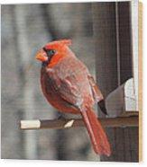 Red Birds Wood Print
