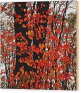 Red Blaze Burst Wood Print