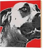 Red Blooded Scooby Dog Wood Print