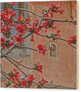 Red Blossoms In The Pink City Wood Print