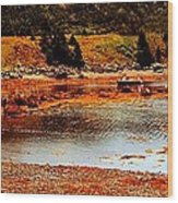 Red Boat At Low Tide Triptych Wood Print