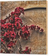 Red Bougainvilla Vine On Stucco Wall Wood Print