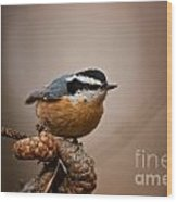 Red-breasted Nuthatch Pictures 36 Wood Print