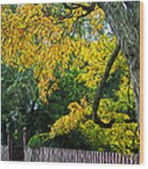 Red Brick Sidewalk Wood Print