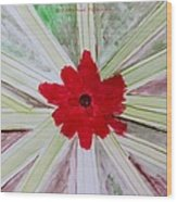 Red Brilliance Wood Print