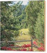 Red Bushes Wood Print