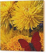 Red Butterfly On African Marigold Wood Print