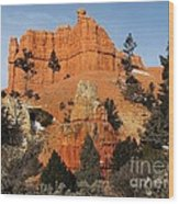 Red Canyon - Scenic Byway 12 Wood Print