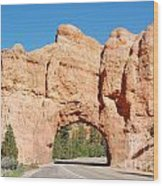 Red Canyon Tunnel Wood Print