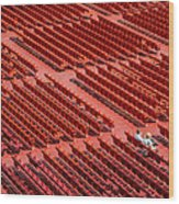 Red Chairs Wood Print by Dobromir Dobrinov