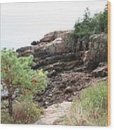 Red Cliffs Of Acadia  Wood Print