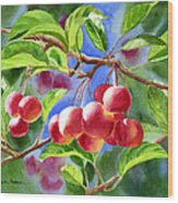 Red Crab Apples With Background Wood Print