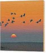 Red-crowned Crane Wood Print