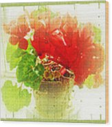 Red Cyclamen On Windowsill Wood Print