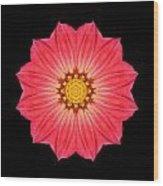 Red Dahlia Hybrid I Flower Mandala Wood Print