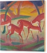 Red Deer 1 Wood Print