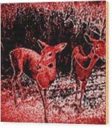 Red Deer Wood Print