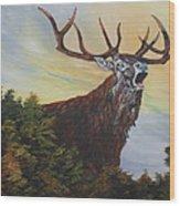 Red Deer - Stag Wood Print
