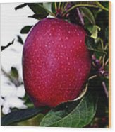 Red Delicious Wood Print