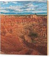 Red Desert Landscape Wood Print