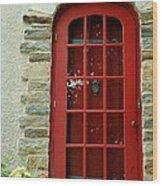 Red Door In Baltimore Wood Print
