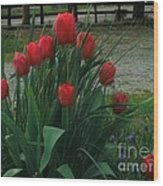 Red Dynasty Red Tulips Wood Print