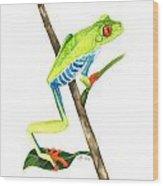 Red-eyed Treefrog From La Selva Wood Print